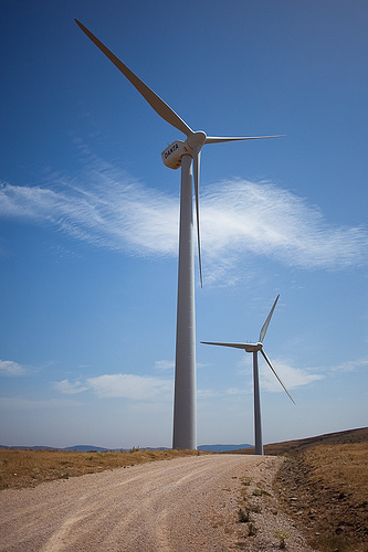 Molinos de viento 1